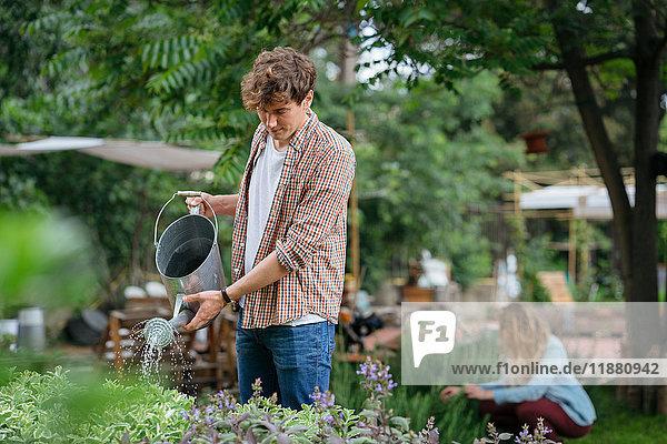 Junger Mann und Frau kümmern sich um Pflanzen im Stadtgarten  Mann gießt Pflanzen mit der Gießkanne