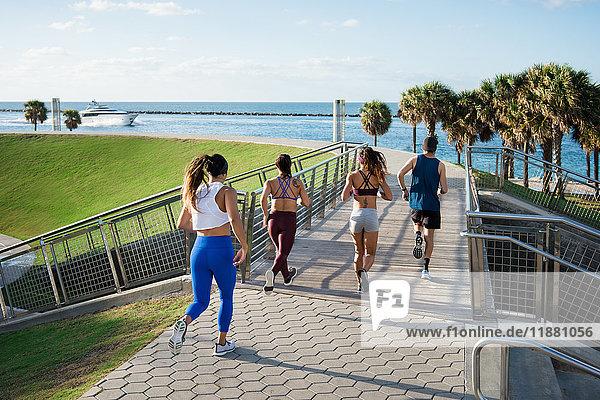 Drei Frauen laufen mit Personal Trainer  Rückansicht  South Point Park  Miami Beach  Florida  USA