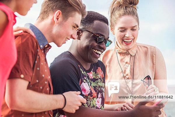 Junge erwachsene Freunde schauen auf Smartphone