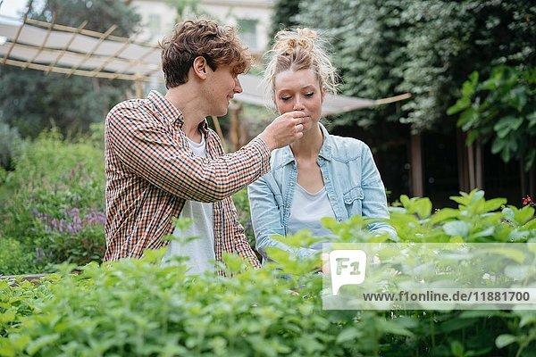 Junger Mann und Frau im Garten  junger Mann hält Pflanze für Frau zum Riechen