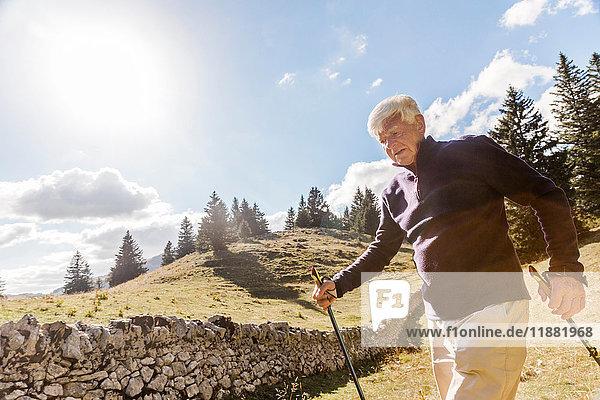 Älterer Mann geht in ländlicher Umgebung  mit Wanderstöcken  Genf  Schweiz  Europa