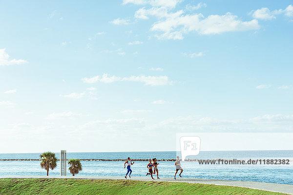 Drei Frauen trainieren  laufen  mit persönlicher Trainerin  Point Park  Miami Beach  Florida  USA