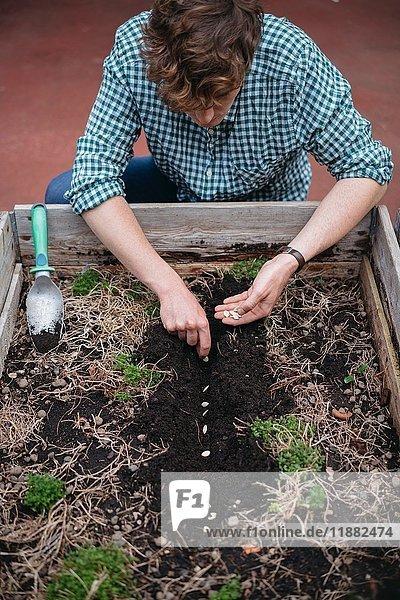 Der Mensch pflanzt Samen in den Boden
