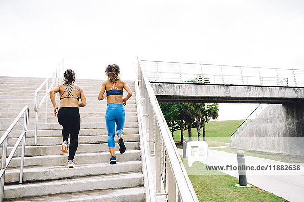 Two you women exercising outdoors  running up steps  rear view  steps  South Point Park  Miami Beach  Florida  USA