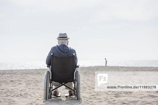 Rear view of senior man in wheelchair looking out from beach  Santa Monica  California  USA