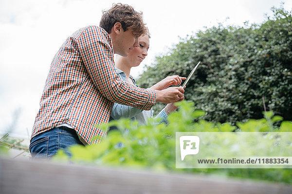 Junger Mann und Frau im Stadtgarten  fotografieren Pflanzen mit digitalem Tablett  Niedrigwinkelansicht