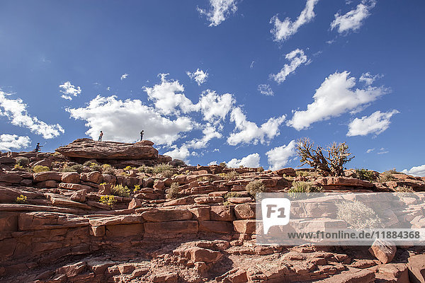 'At Eagle Point in West Grand Canyon  tourists climb the steep mountain ranges for great viewpoints and photo opportunities from the top of this lookout hiking trail; Arizona  United States of America'