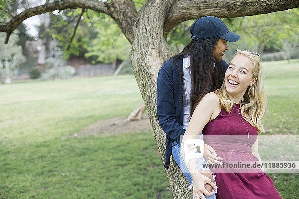 Lächelndes junges lesbisches Paar sitzt auf einem Baumstamm im Park.
