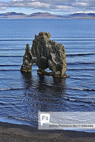Hvitserkur  Blönduós  Blönduósi  Island  Europa