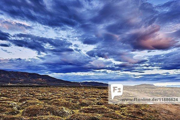 Krafla-Caldera  Vulkan Leirhnjúkur  Reykjahlíð  Mývatni  Island  Europa