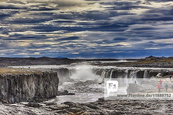 Wasserfall Selfoss  Vidhirholl  Norðurland Eystra  Island  Europa