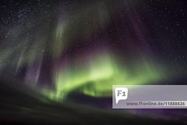 Nordlicht  Aurora borealis  Borðeyri  Hvammstangi  Nordisland  Island  Europa