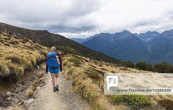 Wanderin auf Kepler Track  Fiordland Nationalpark  Southland  Südinsel  Neuseeland  Ozeanien
