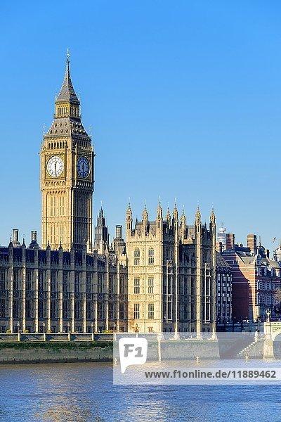 Der Glockenturm von Big Ben über Palace of Westminster  London  England  Großbritannien  Europa
