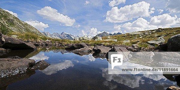 Blick von einem kleinen Bergsee zum Zillertaler Hauptkamm im Hochgebirgs-Naturpark Zillertaler Alpen  Österreich  Europa