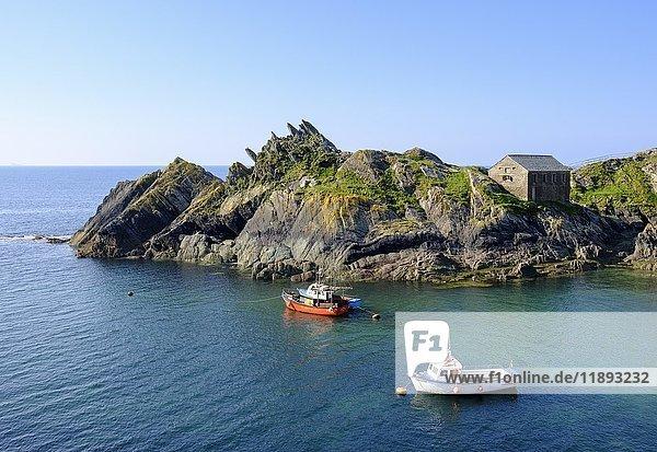 Fischerboote  Chapel Rock und Net Loft  Klippen an Küste in Polperro  Cornwall  England  Großbritannien  Europa