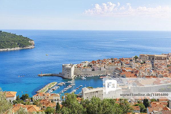 Altstadt  Dubrovnik  Dalmatien  Kroatien  Europa