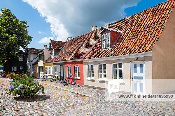 Odense  Denmark  Traditional colored houses in the old town