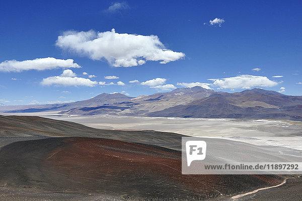 Argentina  Salta region  Puna desert