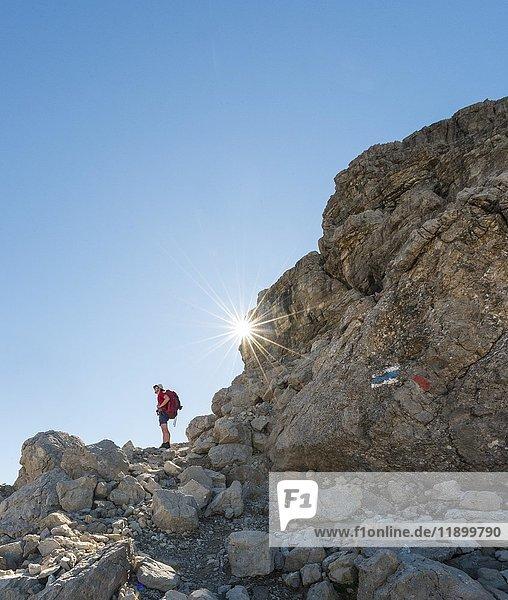 Wanderer beim Aufstieg  Fuchskarspitze  Balkenspitzen  Allgäu  Allgäuer Hochalpen  Bayern  Deutschland  Europa