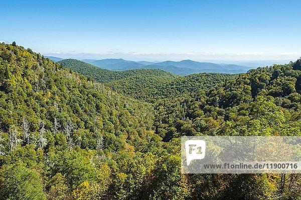 Blue Ridge Mountains vom Blue Ridge Parkway  Haywood County  North Carolina  USA  Nordamerika