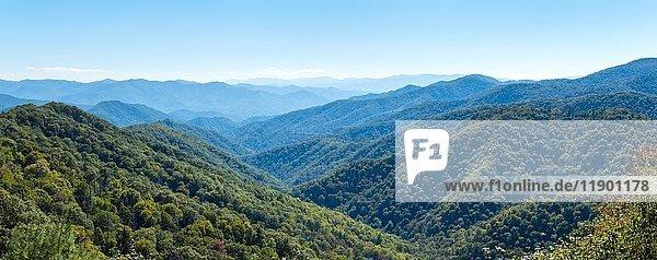 Blue Ridge Parkway im Great Smoky Mountains Nationalpark  Swain County  North Carolina  USA  Nordamerika