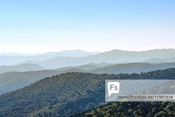 Clingman's Dome  Grenze zwischen North Carolina und Tennessee  Great Smoky Mountains Nationalpark  North Carolina  USA  Nordamerika