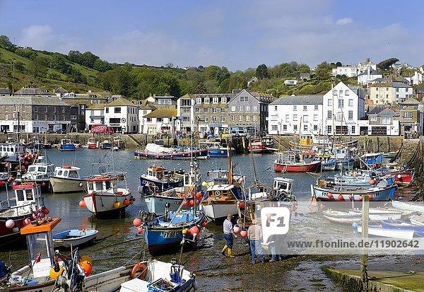 Fishing port  Mevagissey  Cornwall  England  United Kingdom  Europe