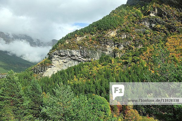 Autumn on Valley of Ordesa and Monte Perdido National Park. Aragonese Pyrenees  Huesca province  Spain