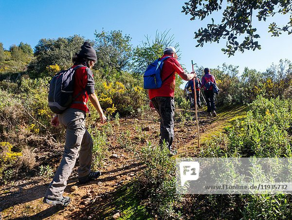 Nature sport. Trekking in Coripe. Sevilla province. Andalusia southern Spain. Europe.