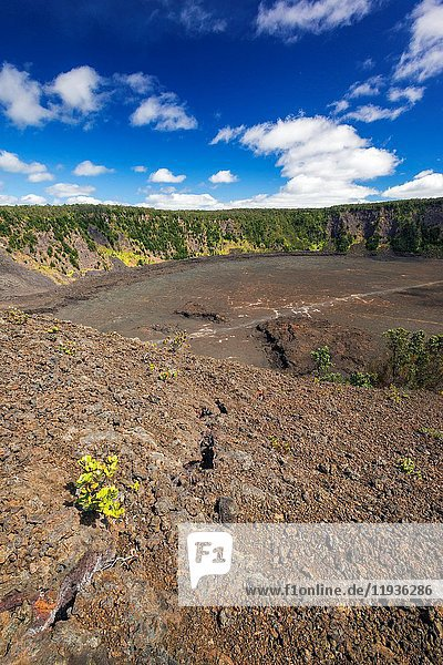 Kilauea Iki crater  Hawaii Volcanoes National Park  Hawaii USA.