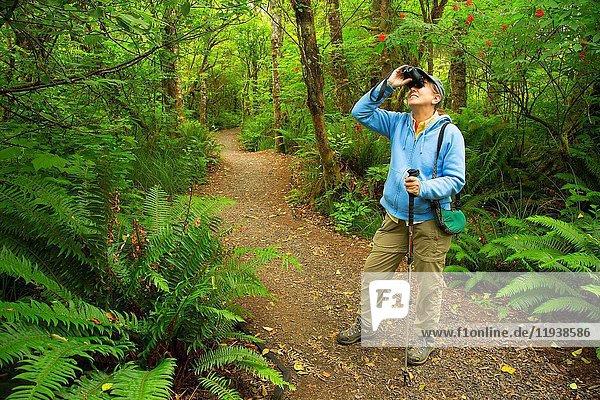 Birding along Pioneer Path Trail  Kilchis Point Reserve  Bay City  Oregon.