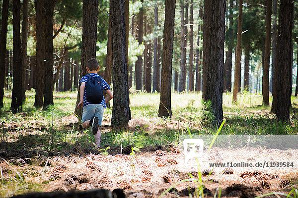 Junge rennt im Wald