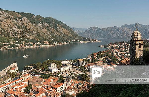 Erhöhte Ansicht von Häusern an der Küste  Kotor  Montenegro  Europa