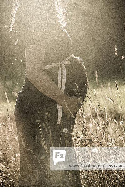 Nahaufnahme einer schwangeren Frau in einem Feld