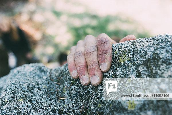Hand eines männlichen Boulderers  der eine Felskante greift  Lombardei  Italien