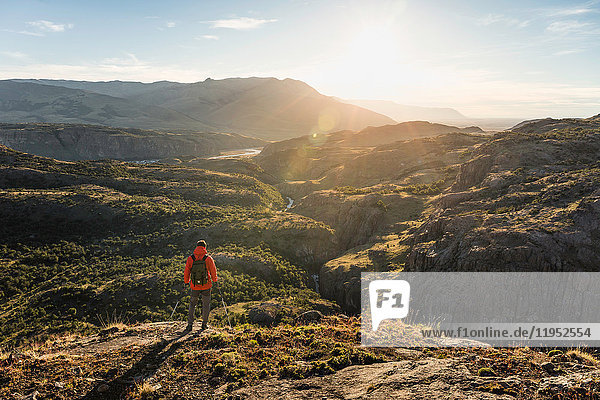 Male hiker looking over sunlit Los Glaciares National Park  Patagonia  Argentina