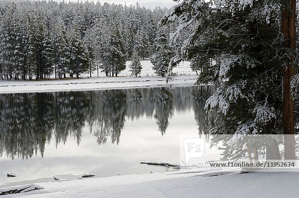 Yellowstone River im Winter  Yellowstone-Nationalpark  Wyoming  USA