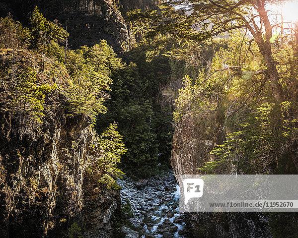 Landschaftsansicht der Waldschlucht und des Flusses Azul  Cajon del Azul bei El Bolson  Patagonien  Argentinien