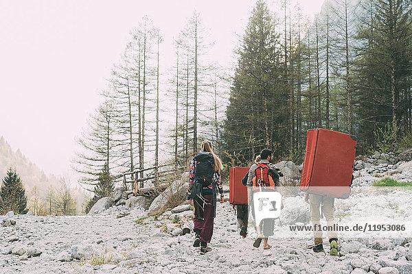 Rückansicht von erwachsenen Freunden  die mit Rucksack und Bouldermatten in Waldnähe wandern  Lombardei  Italien