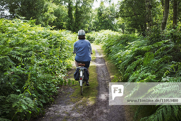 Rear view of woman cycling along forest path under a green tree canopy  on a path lined with ferns.