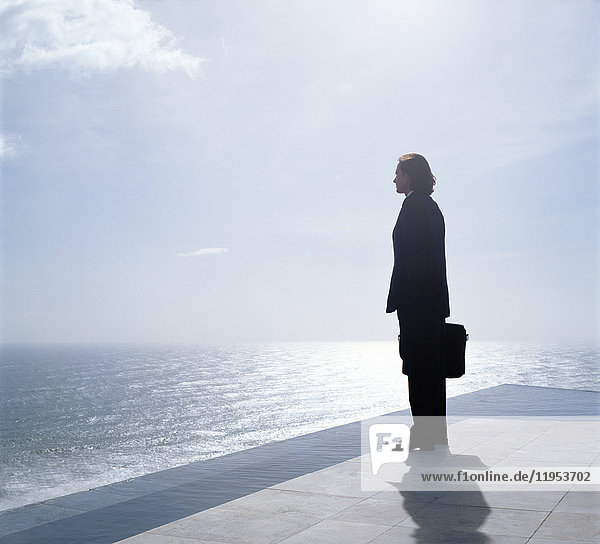 Businessman wearing dark suit holding briefcase  standing outdoors at edge of the ocean.