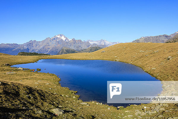 The blue Lakes of Campagneda framed by Monte Disgrazia  Malenco Valley  Province of Sondrio  Valtellina  Lombardy  Italy  Europe