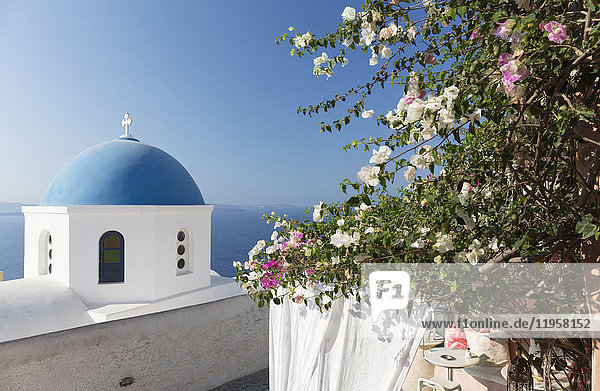 White church with blue dome and flowers  Oia  Santorini  Cyclades  Greek Islands  Greece  Europe