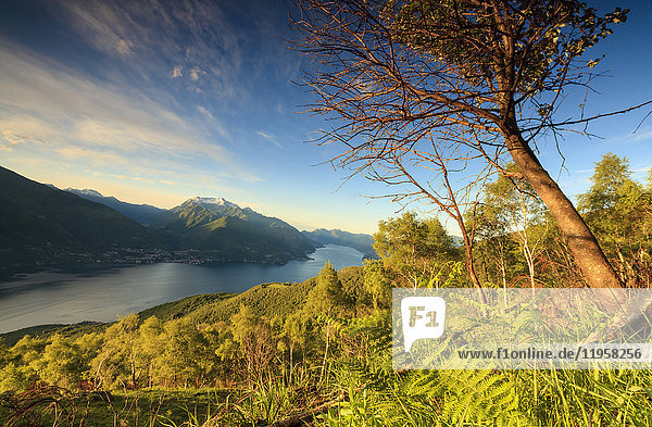 Lake Como surrounded by green meadows framed by the first lights of dawn  Cremia  San Domenico  Lombardy  Italian Lakes  Italy  Europe