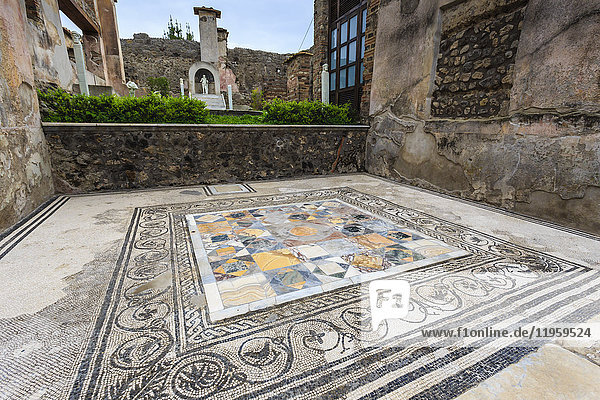 Mosaic  House of Marcus Lucretius in Via Stabiana  Roman Pompeii  UNESCO World Heritage Site  near Naples  Campania  Italy  Europe
