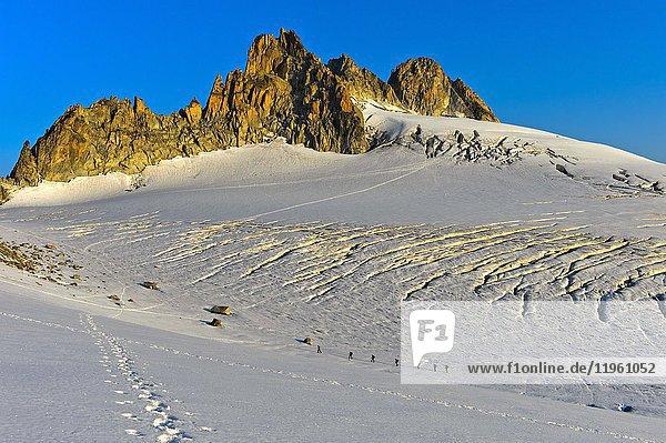 Group of alpinists in the morning sun on the glacier Plateau du Trient beneath the peaks Aiguilles du Tour  Valais  Switzerland.
