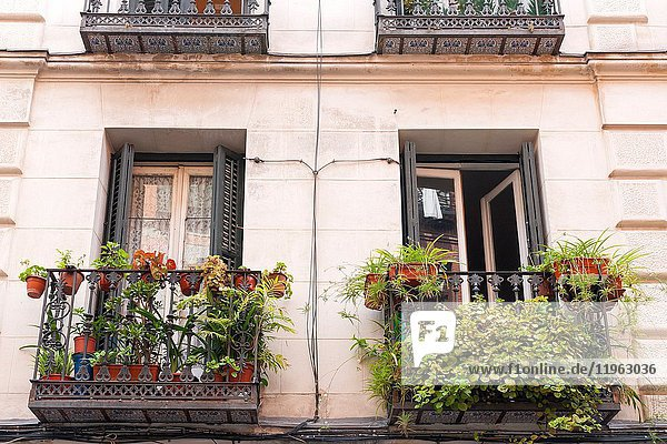 Balconies. Typical architecture. Madrid. Spain.