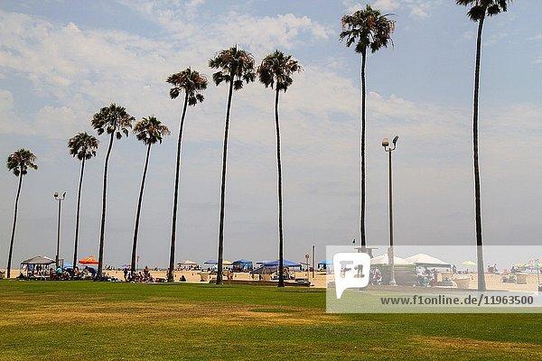 Looking across Peninsula Park towards Balboa Pier Beach  Newport Beach  Orange County  California  United States.