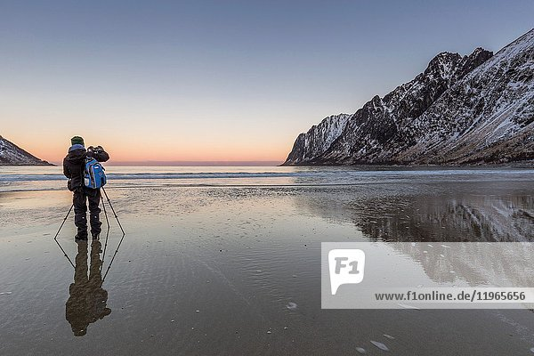 Photographer on the beach of Ersfjord at dawn, Berg, Senja, Norway, Europe.